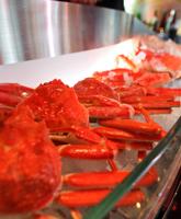 """Crab SAKABA """"Carat"""""""