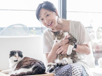 川上麻衣子さん出演イベント「今夜は♡猫♡に感謝祭」