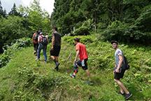 森歩きを通じ森林や木の理解を深める