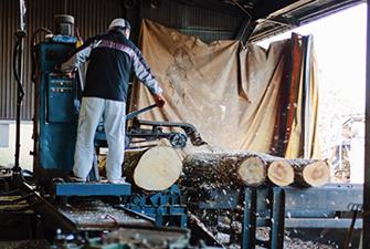 西野製材所の協力のもと、広葉樹の個性に触れることも